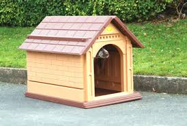 dogs kennel