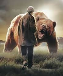 grizzly man pictures