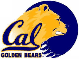 cal bear