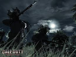call of duty waw pictures