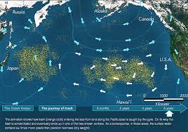 pacific ocean trash