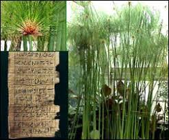 ancient egypt plants