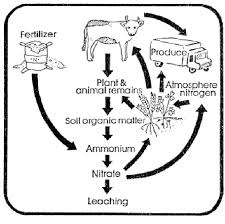 agricultural system