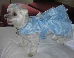 pretty blue dresses