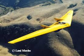 flying wings rc