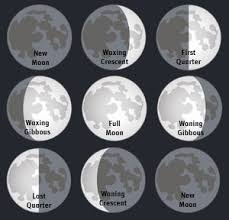 cycles moon