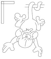 color in monkeys