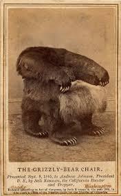 grizzlies bear