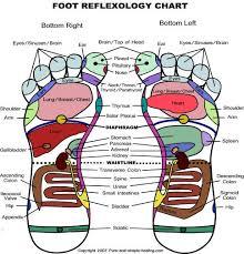 foot reflexology charts