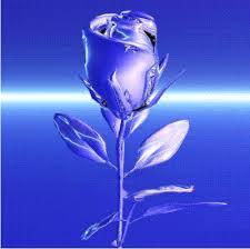 rose animated gif