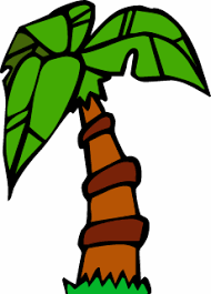 animated palm trees pictures