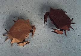 shore crabs