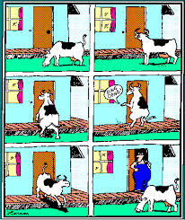 far side cow