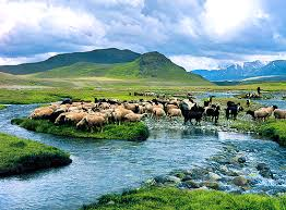 DeosaiPlainSkardu&ampt1 - Deosai Plains In Skardu