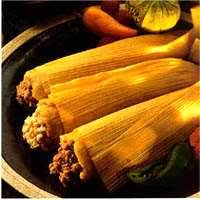 mexican tamale