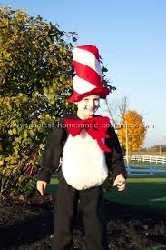 cat and the hat costumes