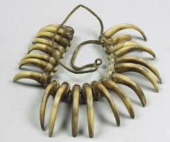 grizzly bear claw necklace