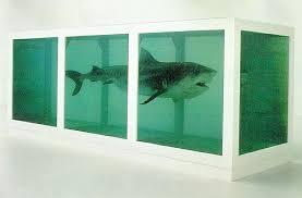 formaldehyde shark