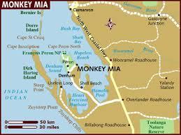 monkey mia australia