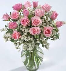 pink roses photos
