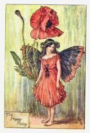 cicely mary barker flower fairy