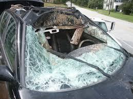 crack windshield