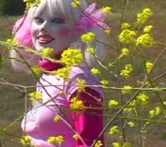 princess clown