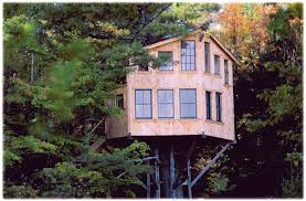 pictures of a tree house