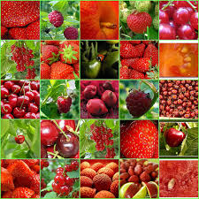 fruits vegetables pictures