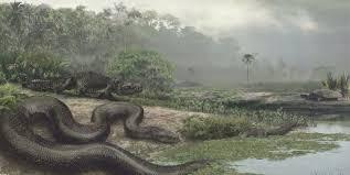 50 ft snake