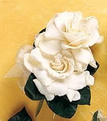 gardenia corsages