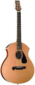 parker acoustic guitars