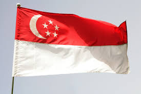 http://t0.gstatic.com/images?q=tbn:sDYkXN1_sNL4xM:http://curiouslaura.files.wordpress.com/2009/06/singapore-flag-jpg.jpeg
