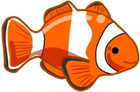 clown fish clipart