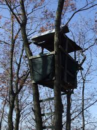 deer hunting tree stand