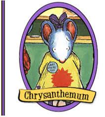 chrysanthemum henkes