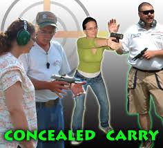 conceal carry handgun