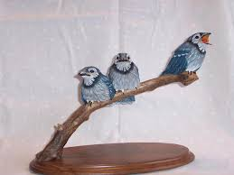 birds blue jays