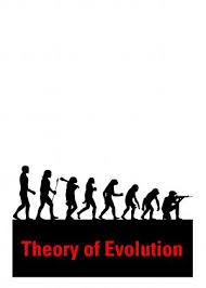 theory of evolution pictures
