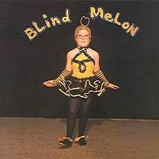 blind melon bee costume
