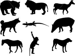 animal vector art