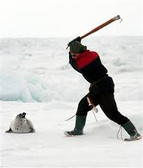 canadian seal hunters