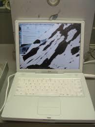 ibook g3 14