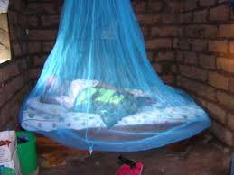 mosquito bednets