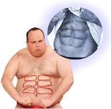 abdominal exercise equipments