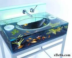 fish tank stuff