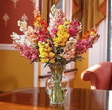 والعناية silk-flowers.jpg