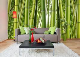 bamboo wallpaper mural