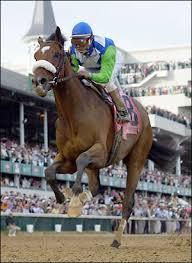 barbaro racehorse