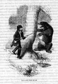 eddy bear